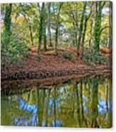 Woodland Canal 2 Canvas Print
