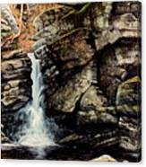 Woodland Falls Canvas Print