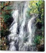 Woodland Falls Canvas Print