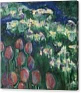 Woodland Field Canvas Print