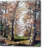 Woodland Pond  Canvas Print