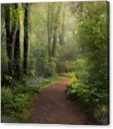 A New Spring Canvas Print