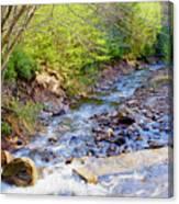 Woodland Stream And Waterfall, Hickory Run, Pocono Mountains Canvas Print