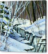Woodland Stream Canvas Print