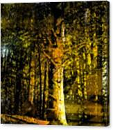 Woodland Tapestry Canvas Print