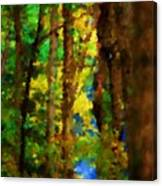 Woods Approach To Lake Canvas Print
