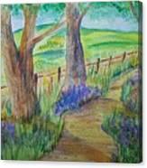 Woods Edge Canvas Print