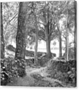 Woods, Troutbeck, Windermere Canvas Print