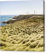 Woolnorth Wind Farm And Ocean Landscape Tasmania Canvas Print