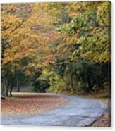 Worlds Ends State Park Road Canvas Print