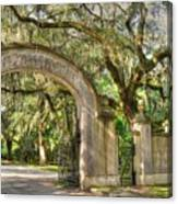 Wormsloe Gate Canvas Print