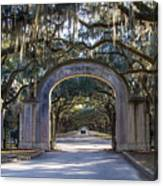 Wormsloe Gates Canvas Print