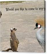 Would You Like To Come To My Party Canvas Print