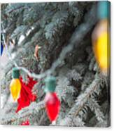 Wrap A Tree In Color Canvas Print