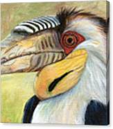 Wreathed Hornbill  Canvas Print