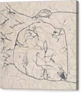 Wrinkled Masterpiece  Canvas Print