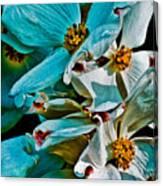 Wrinkly Petals Canvas Print