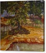 Wylie's Island Canvas Print