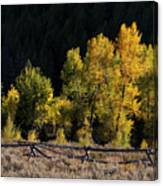 Wyoming Autumn Color One Canvas Print