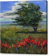 Wyoming Gentle Breeze Canvas Print