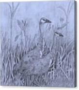 Wyoming Sandhill Cranes Canvas Print