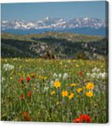 Wyoming's Winds Canvas Print