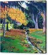 Wyomissing Creek Canvas Print
