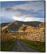Yakima Valley Spring Canvas Print