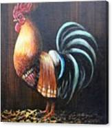 Yang Rooster Canvas Print