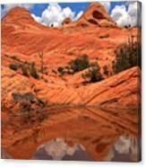 Yant Flat Canyon Reflections Canvas Print