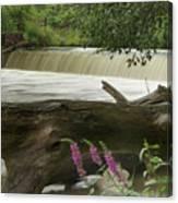 Yates Dam Canvas Print