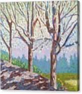Yay-springtime Canvas Print