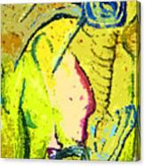 Yello Canvas Print
