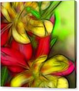 Yellow And Red Columbines Canvas Print