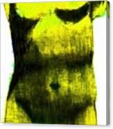 Yellow Aphrodite Canvas Print