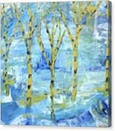 Yellow Birches Canvas Print