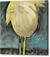 Yellow Bird In Field Canvas Print