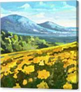 Yellow Blanket Canvas Print