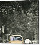 Yellow Bug Canvas Print