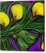 Yellow Calalilies Canvas Print