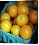 Yellow Cherry Tomatoes Canvas Print
