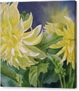 Yellow Dahlia Duet Canvas Print