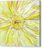 Yellow Daisy Portrait Canvas Print