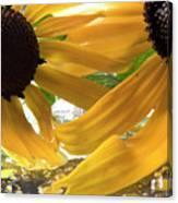 Yellow Droplet Petals Canvas Print