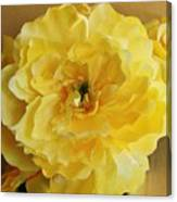 Yellow Elagance Canvas Print