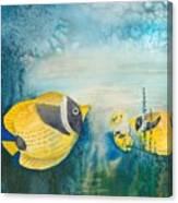 Yellow Fish Yellow Fish Canvas Print
