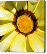 Yellow Flower In The Sun Canvas Print
