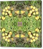 Yellow Flower Photo 1492 Composite Canvas Print