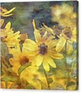Yellow Flower View 4851 Idp_2 Canvas Print
