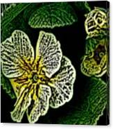 Yellow Flower Woodcut Canvas Print